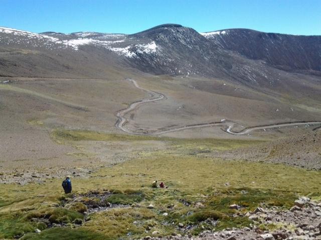Humedales de la Puna Argentina
